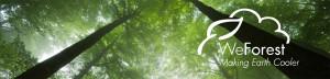 WeForestbanner